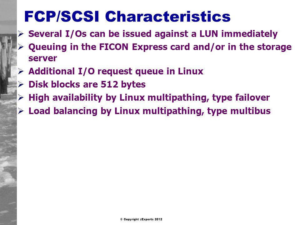 FCP/SCSI Characteristics