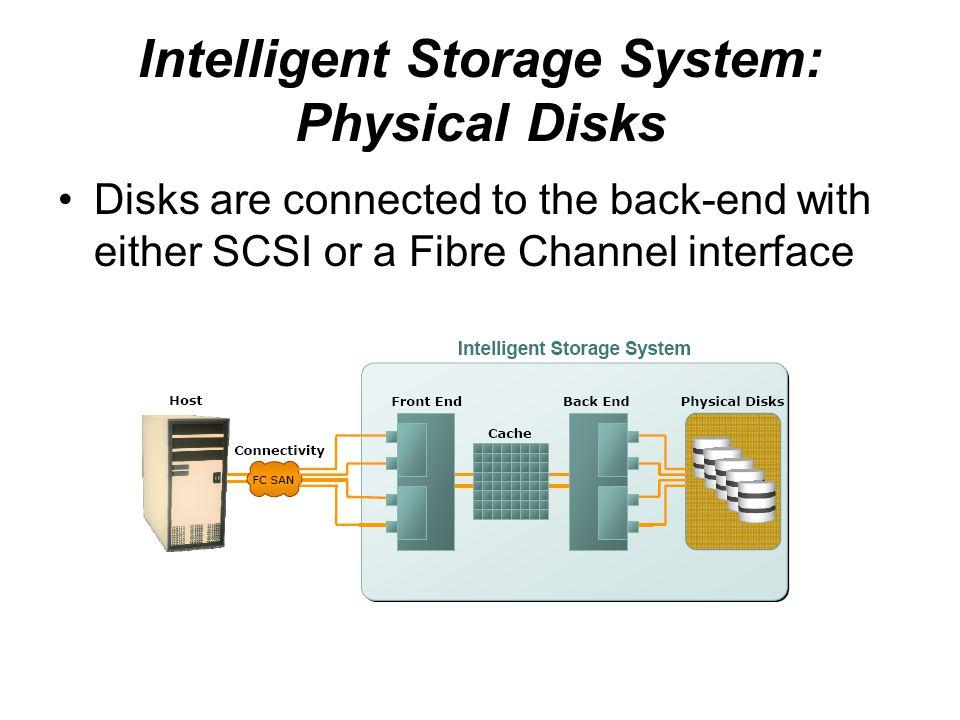 Intelligent Storage System: Physical Disks