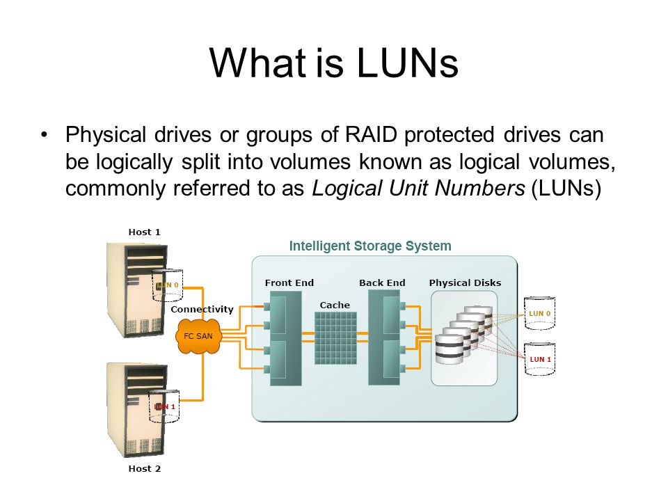 What is LUNs
