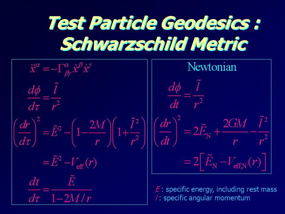 Test Particle Geodesics : Schwarzschild Metric