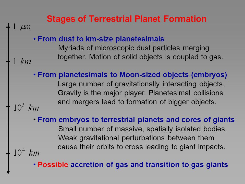 Stages of Terrestrial Planet Formation
