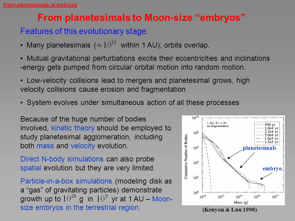 From planetesimals to Moon-size embryos