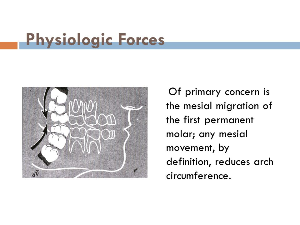 Physiologic Forces