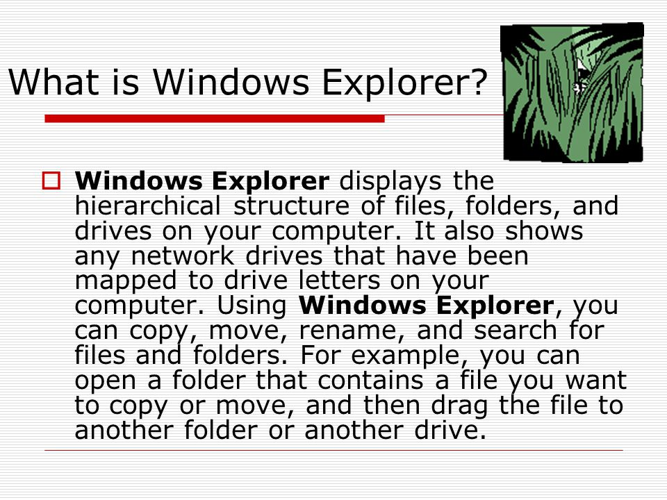 What is Windows Explorer