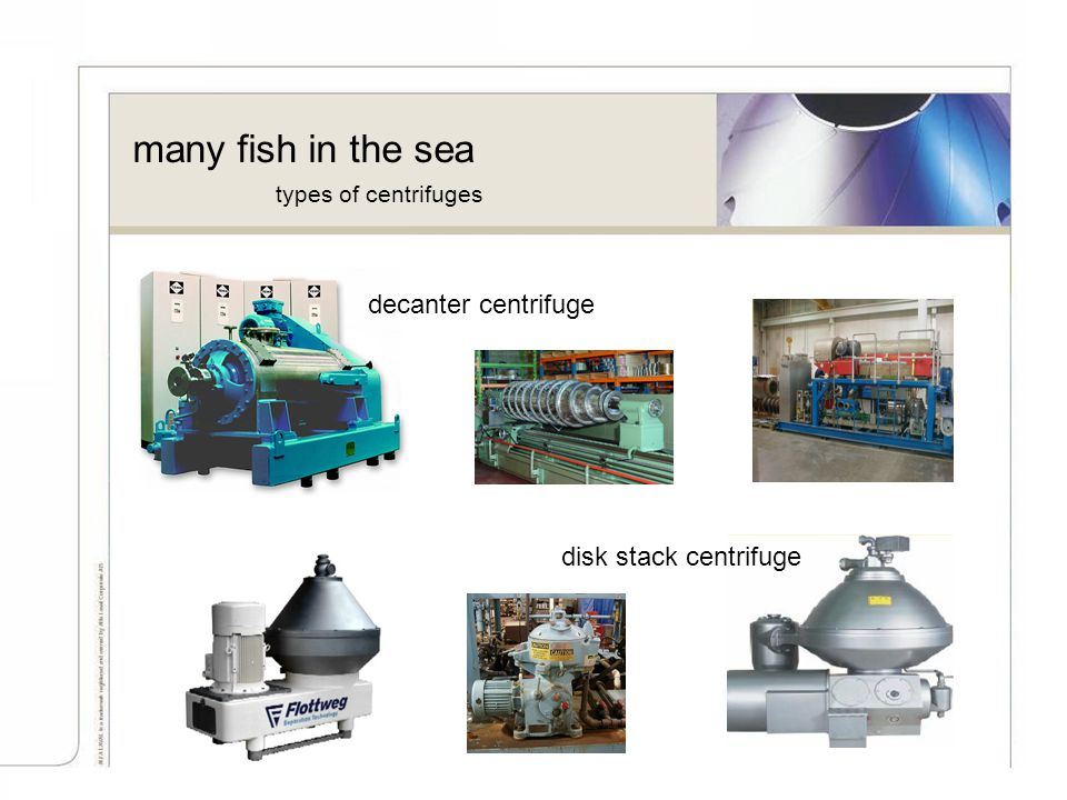 many fish in the sea decanter centrifuge disk stack centrifuge