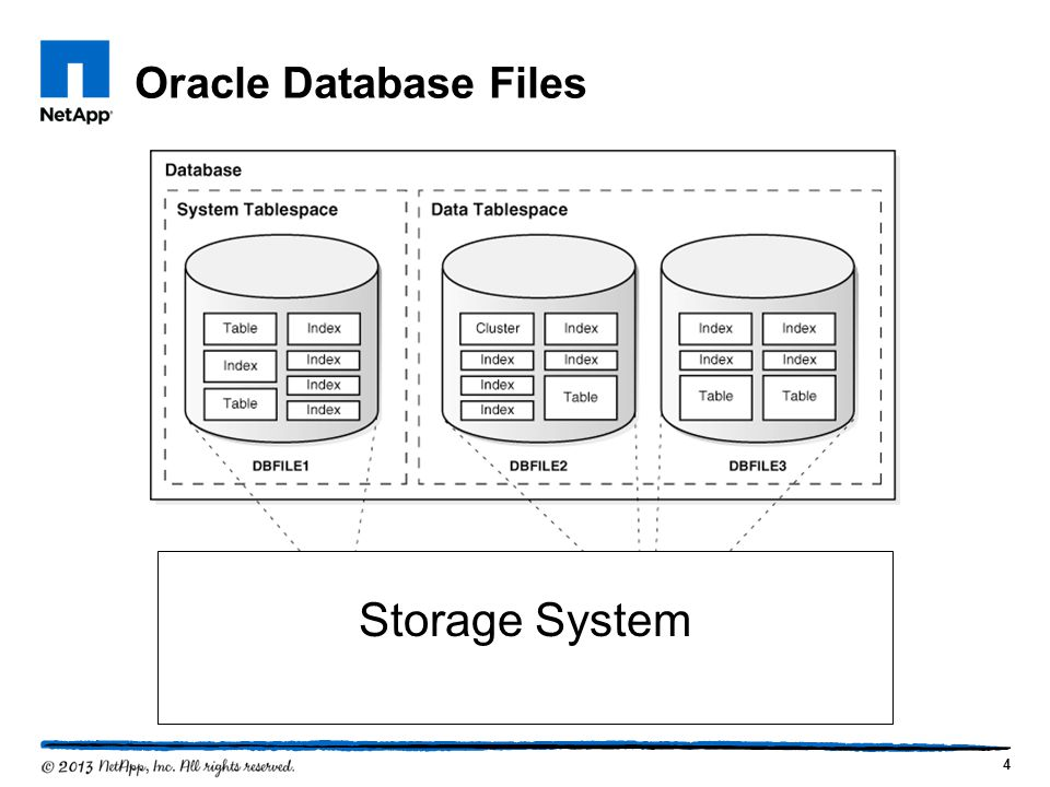 Oracle Database Files Storage System