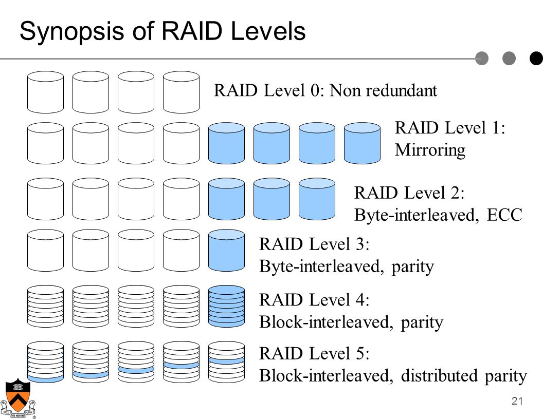 Synopsis of RAID Levels