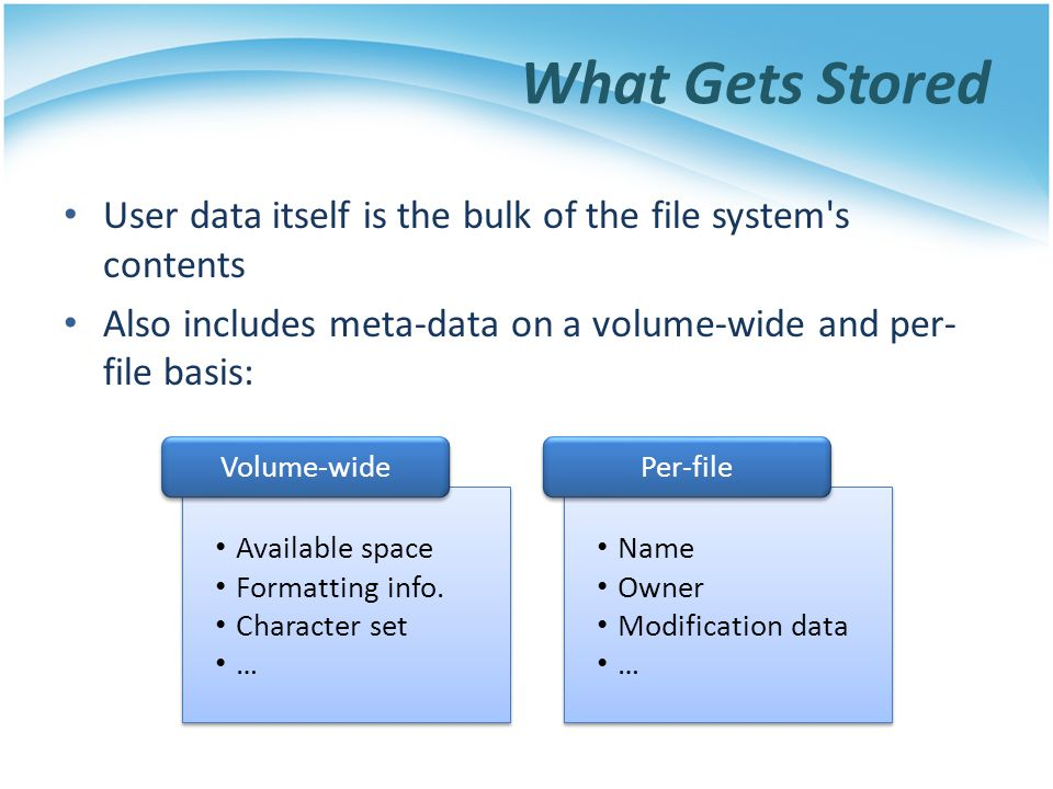 What Gets Stored User data itself is the bulk of the file system s contents. Also includes meta-data on a volume-wide and per-file basis:
