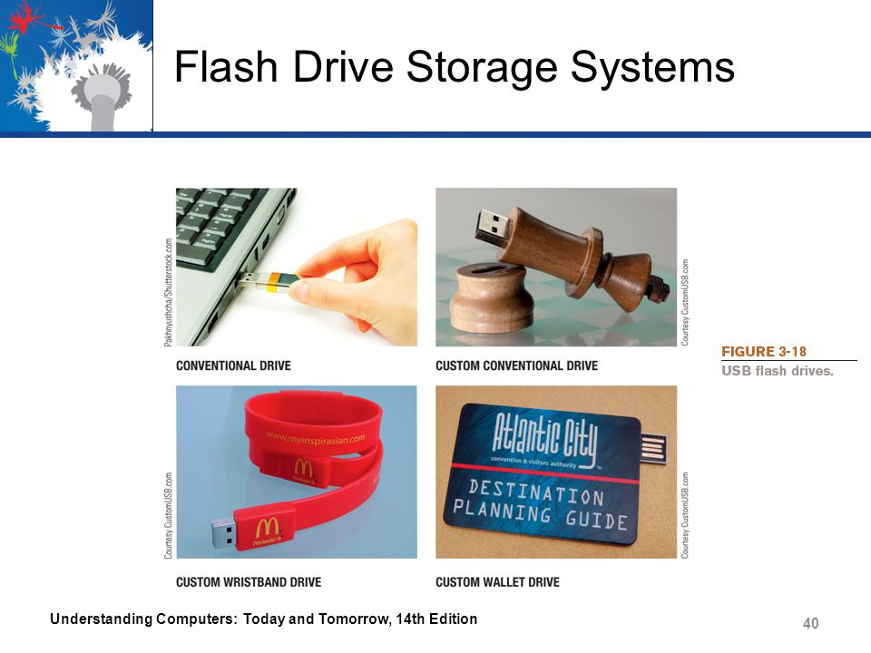 Flash Drive Storage Systems