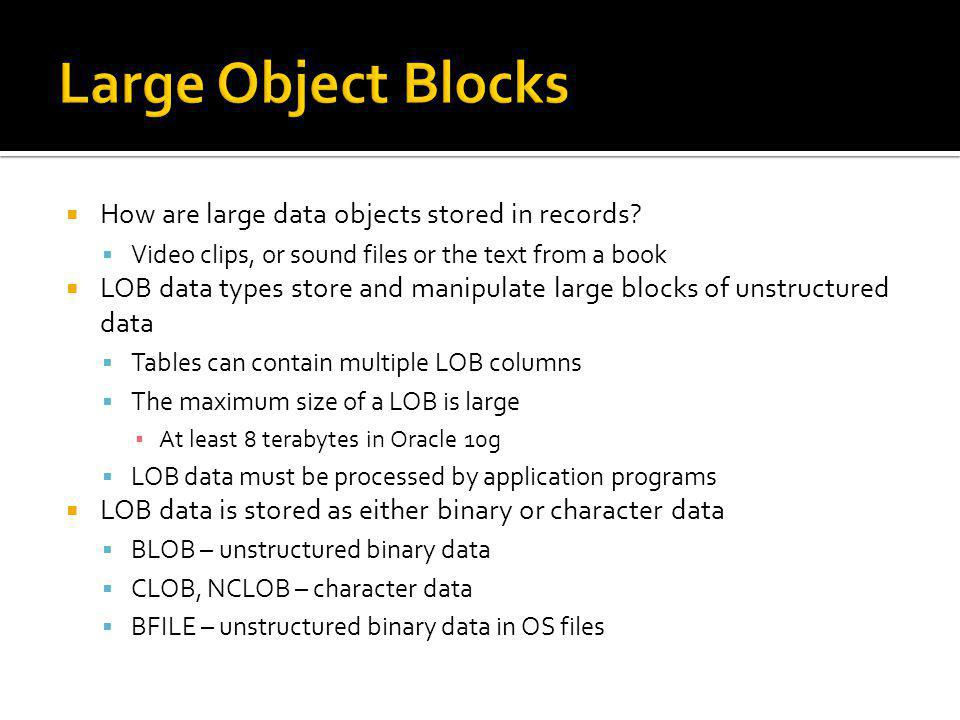 Large Object Blocks How are large data objects stored in records