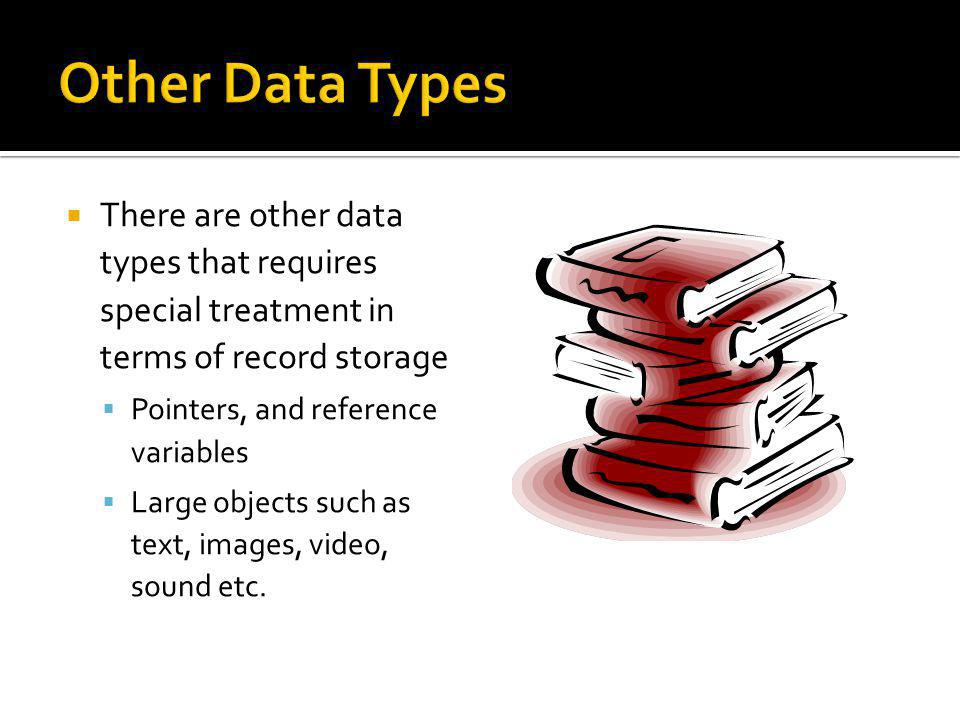 Other Data Types There are other data types that requires special treatment in terms of record storage.