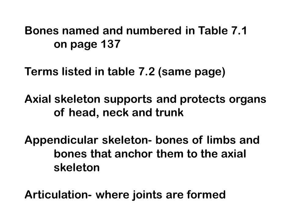 Bones named and numbered in Table 7.1