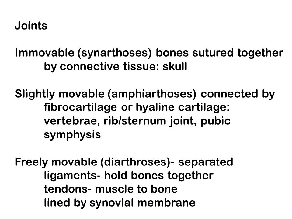 Joints Immovable (synarthoses) bones sutured together. by connective tissue: skull. Slightly movable (amphiarthoses) connected by.