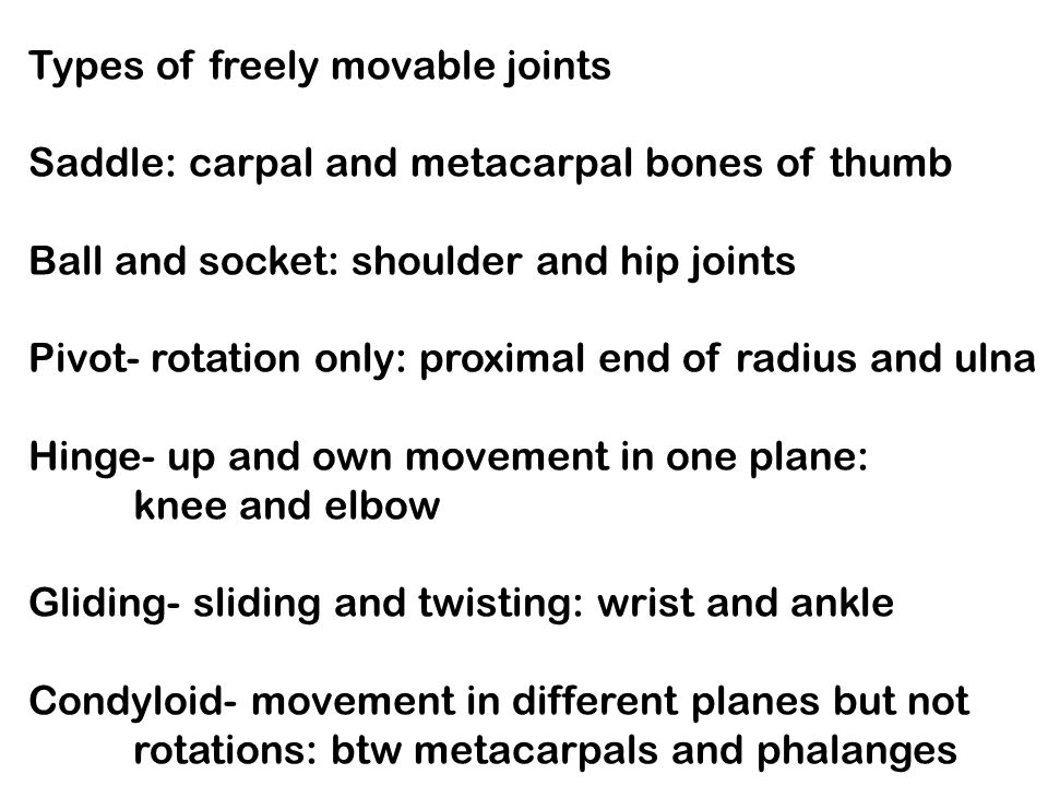 Types of freely movable joints