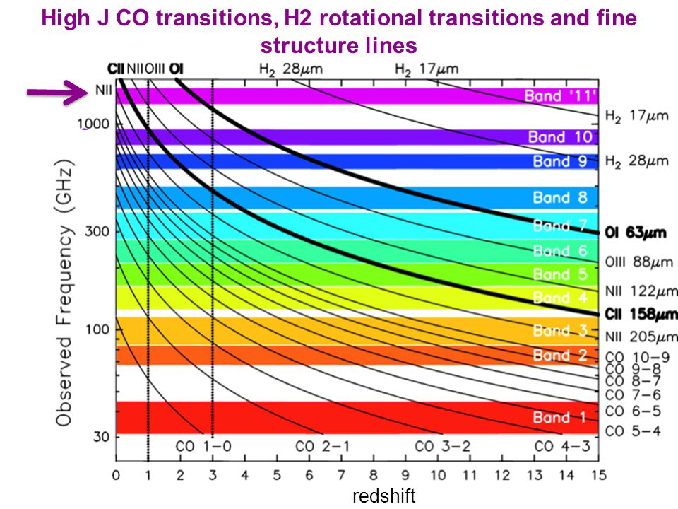 redshift High J CO transitions, H2 rotational transitions and fine structure lines