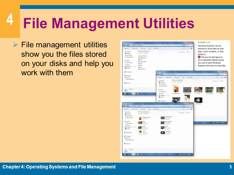 File Management Utilities