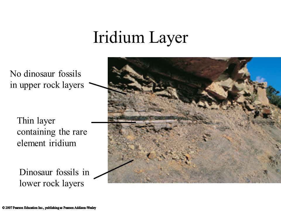 Iridium Layer No dinosaur fossils in upper rock layers