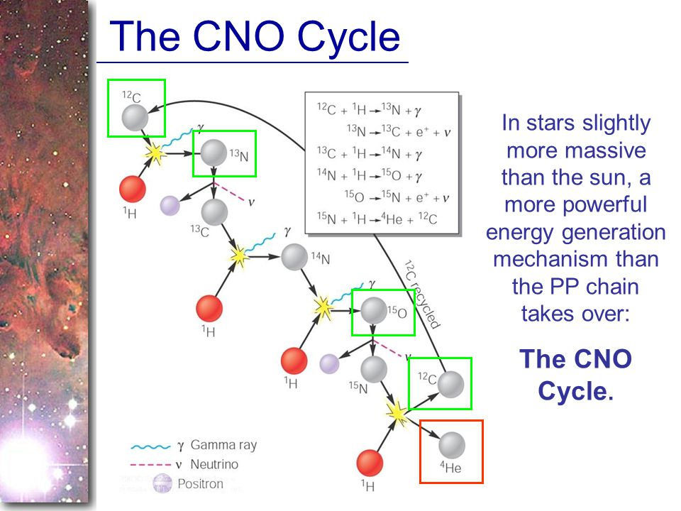 The CNO Cycle The CNO Cycle.