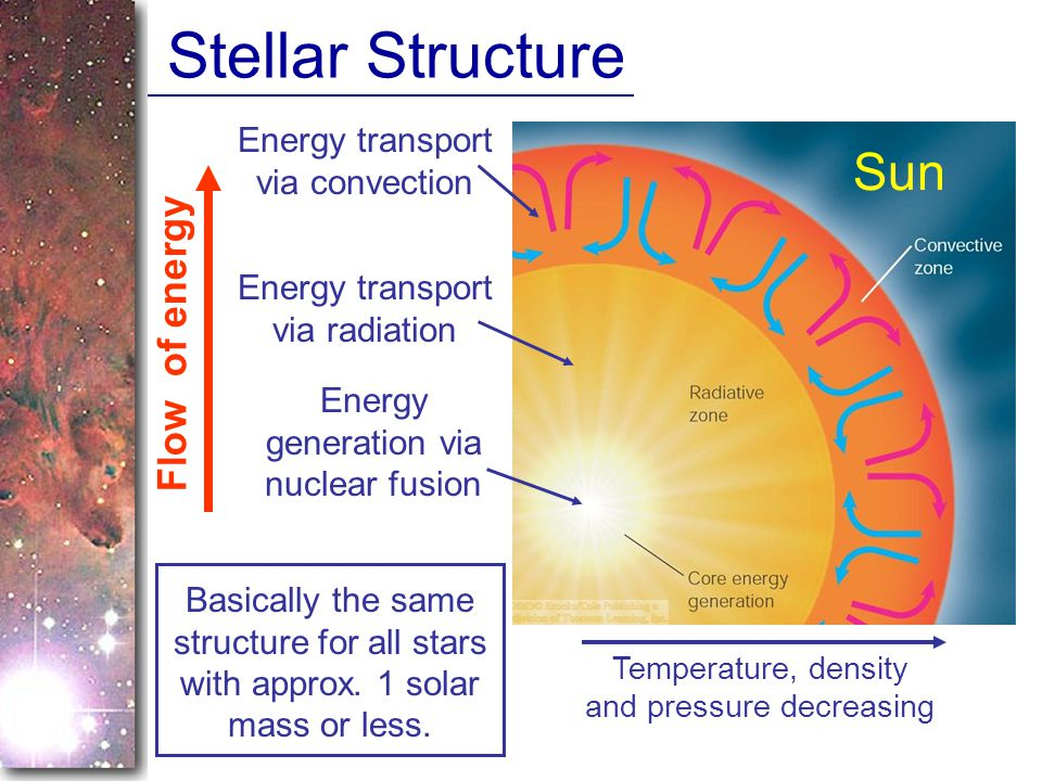 Stellar Structure Sun Flow of energy Energy transport via convection