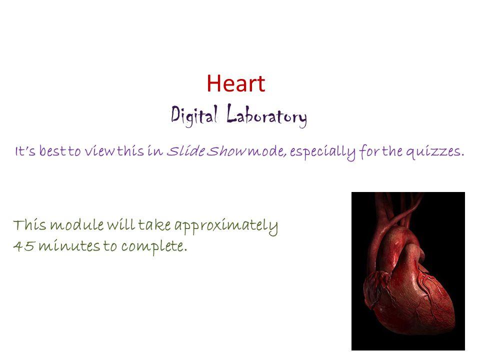 Heart Digital Laboratory