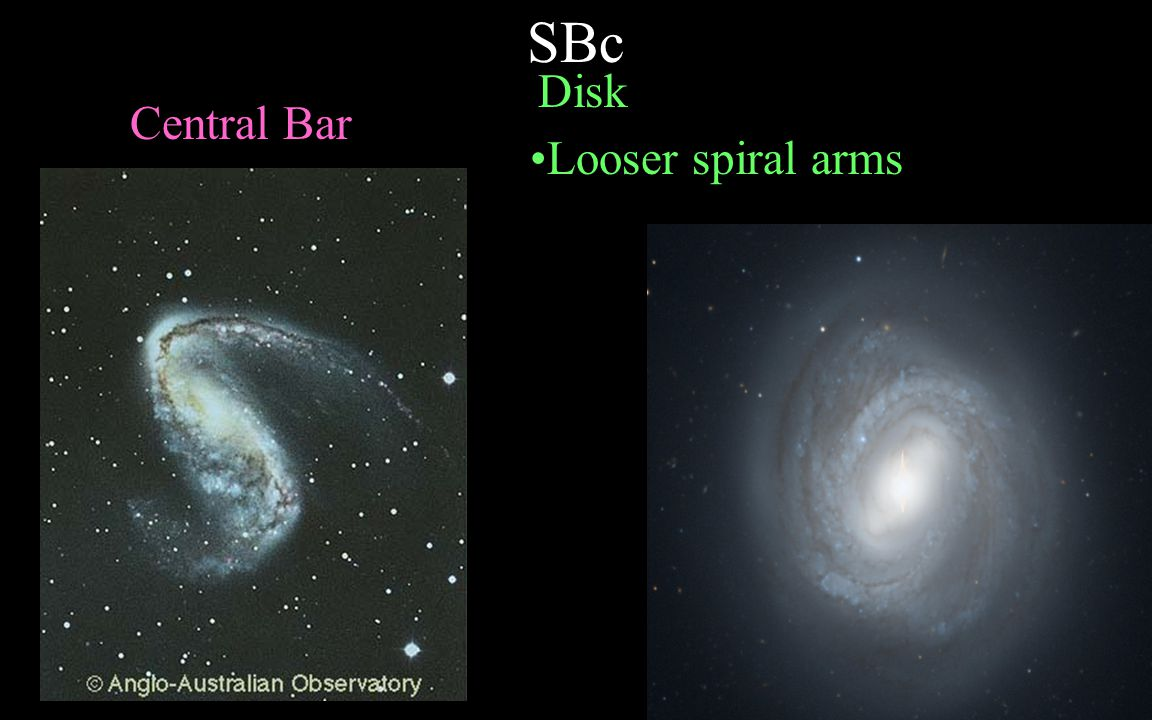 SBc Disk Central Bar Looser spiral arms