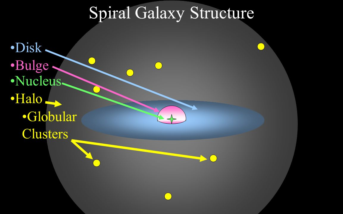 Spiral Galaxy Structure