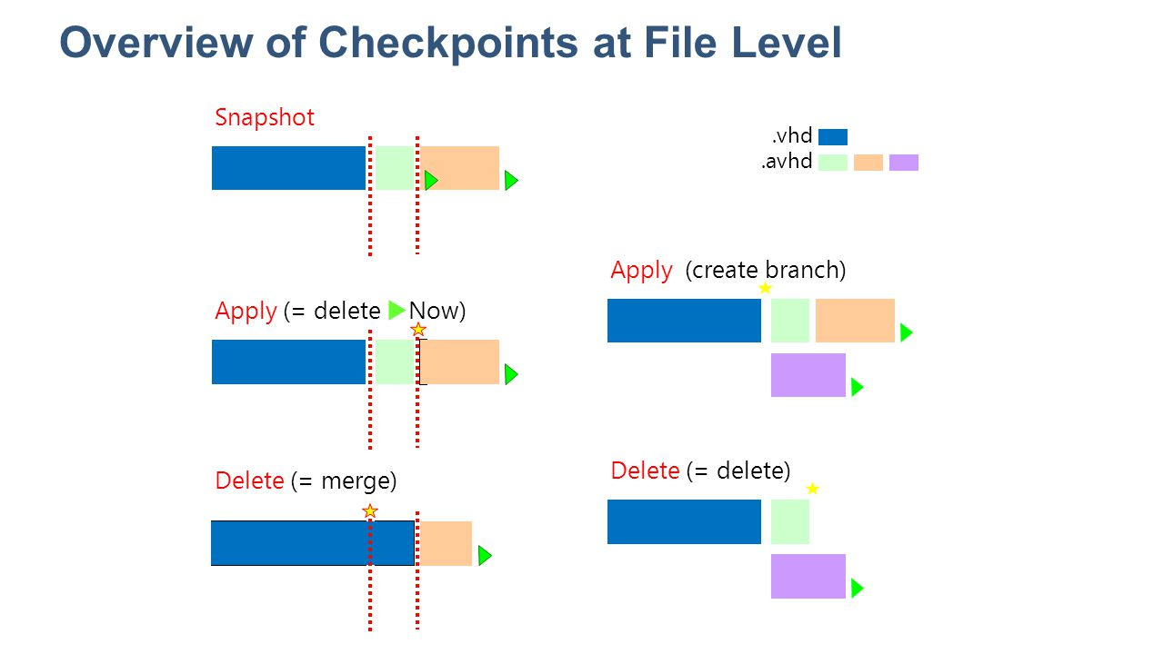Overview of Checkpoints at File Level