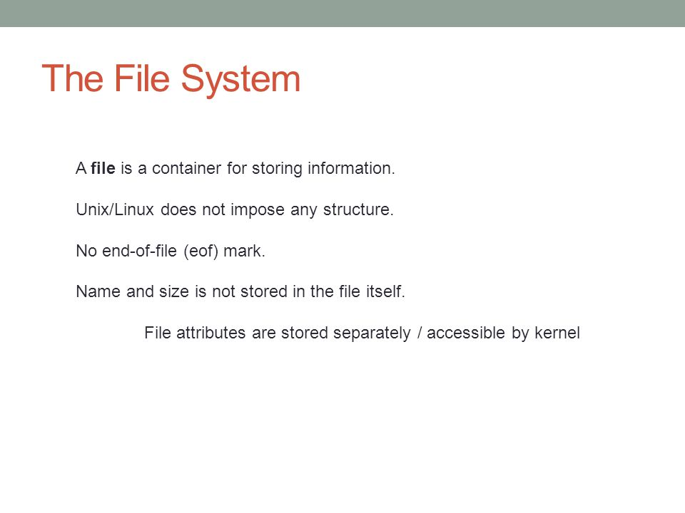 The File System A file is a container for storing information.