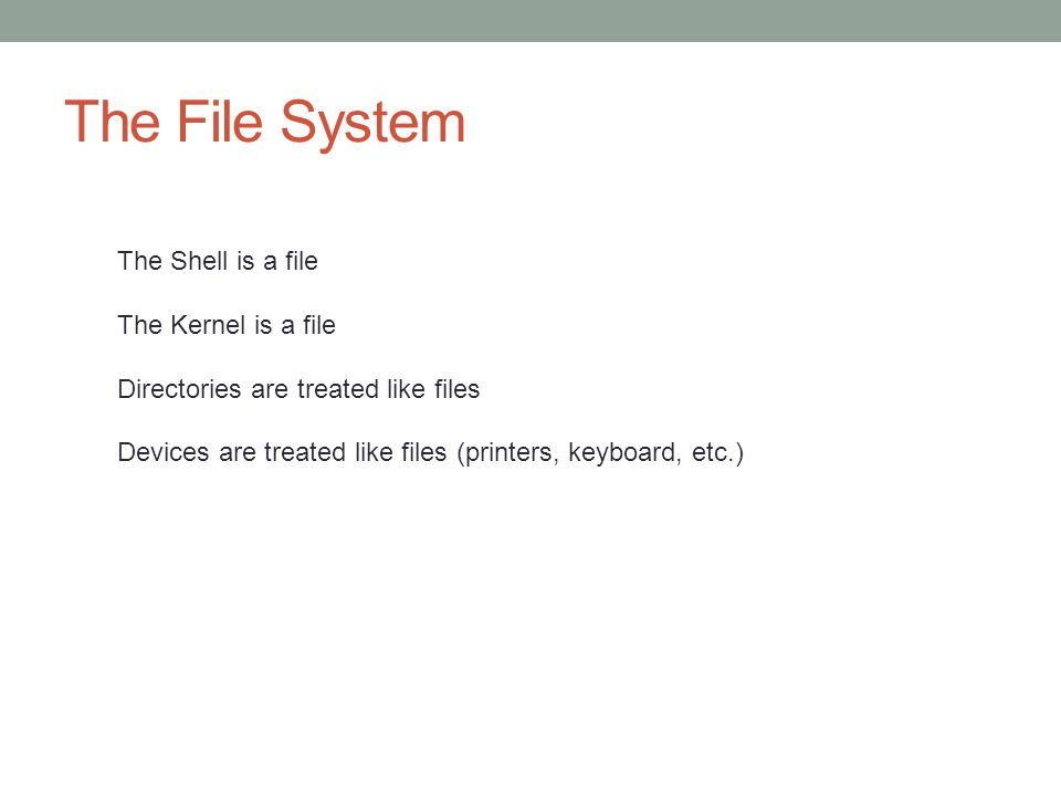 The File System The Shell is a file The Kernel is a file