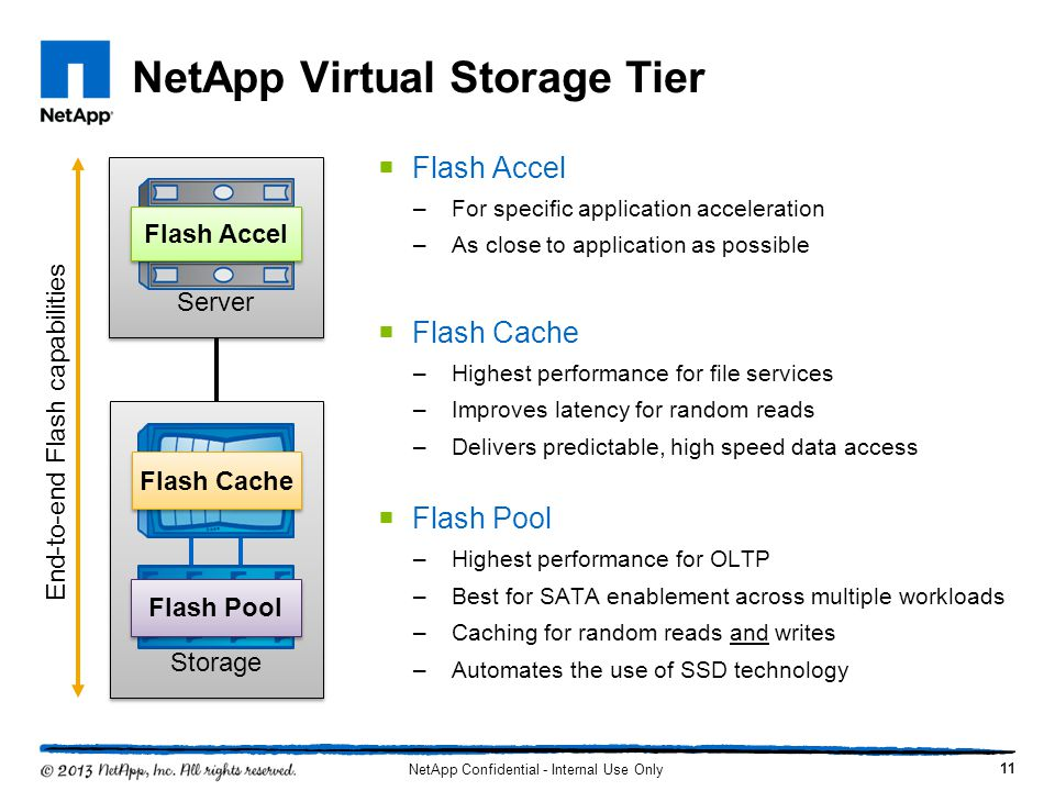 NetApp Virtual Storage Tier