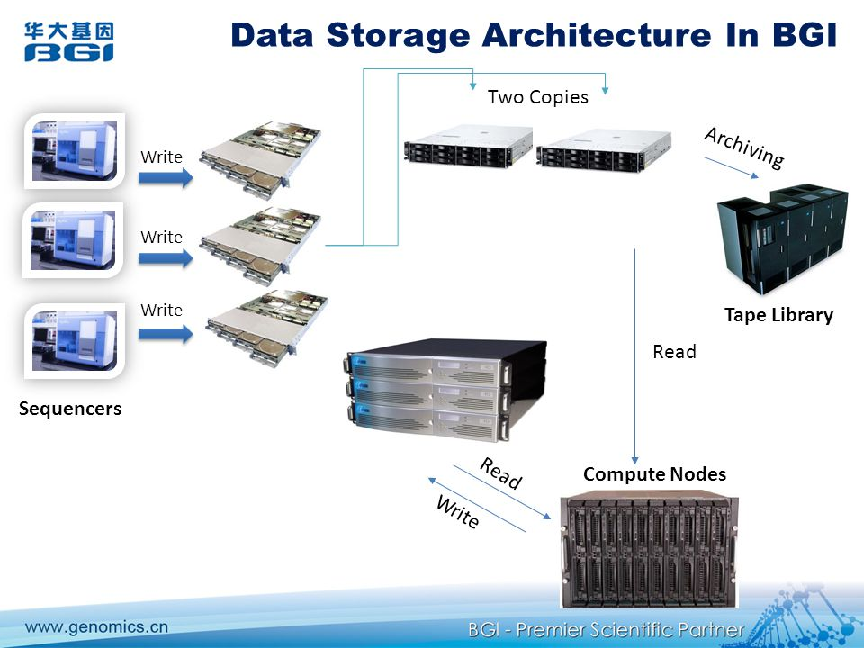 Data Storage Architecture In BGI