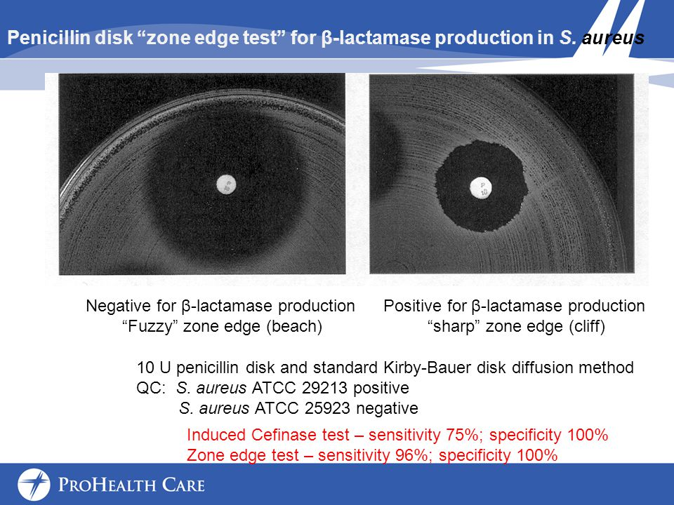 Penicillin disk zone edge test for β-lactamase production in S