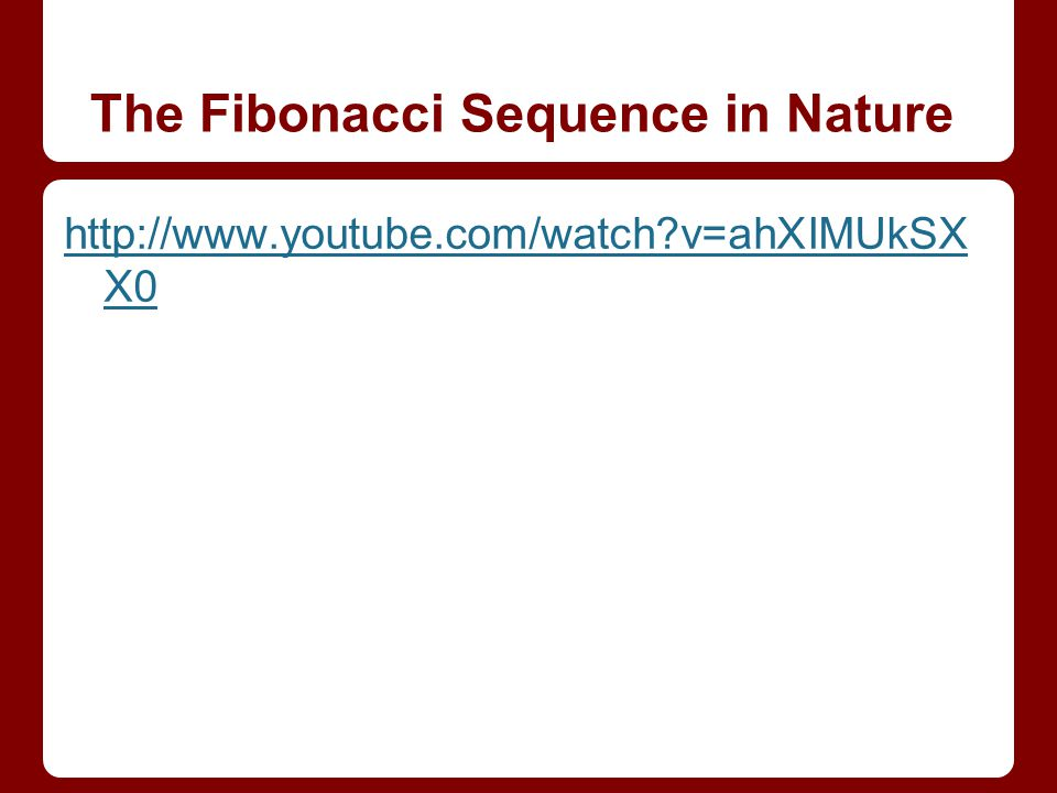 The Fibonacci Sequence in Nature