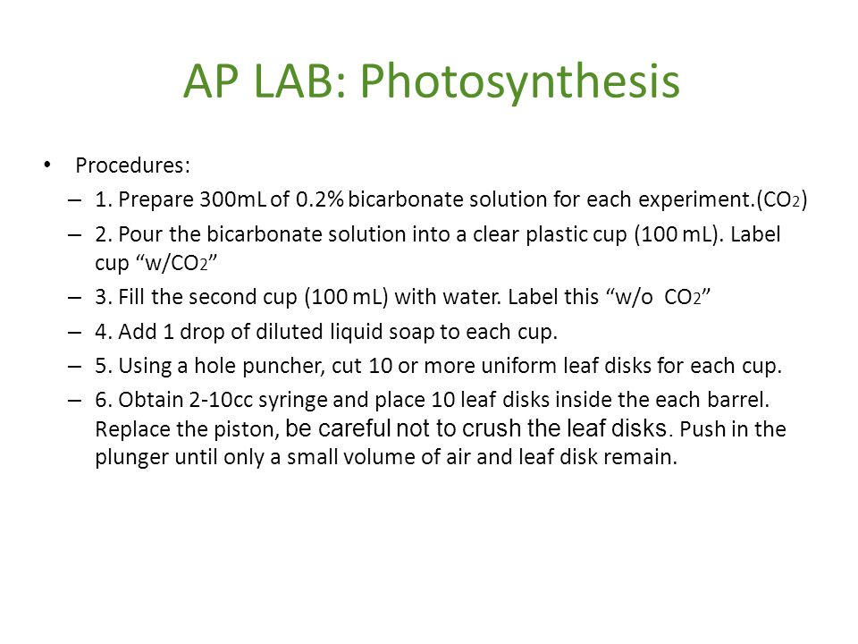 AP LAB: Photosynthesis
