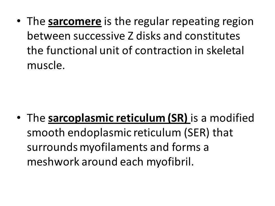 The sarcomere is the regular repeating region between successive Z disks and constitutes the functional unit of contraction in skeletal muscle.