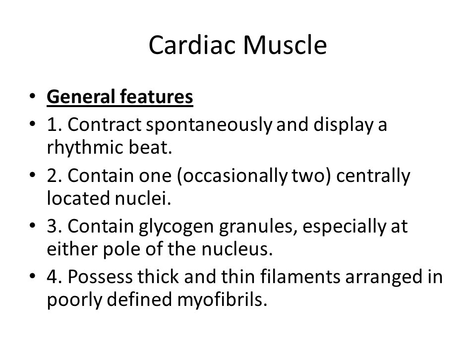 Cardiac Muscle General features