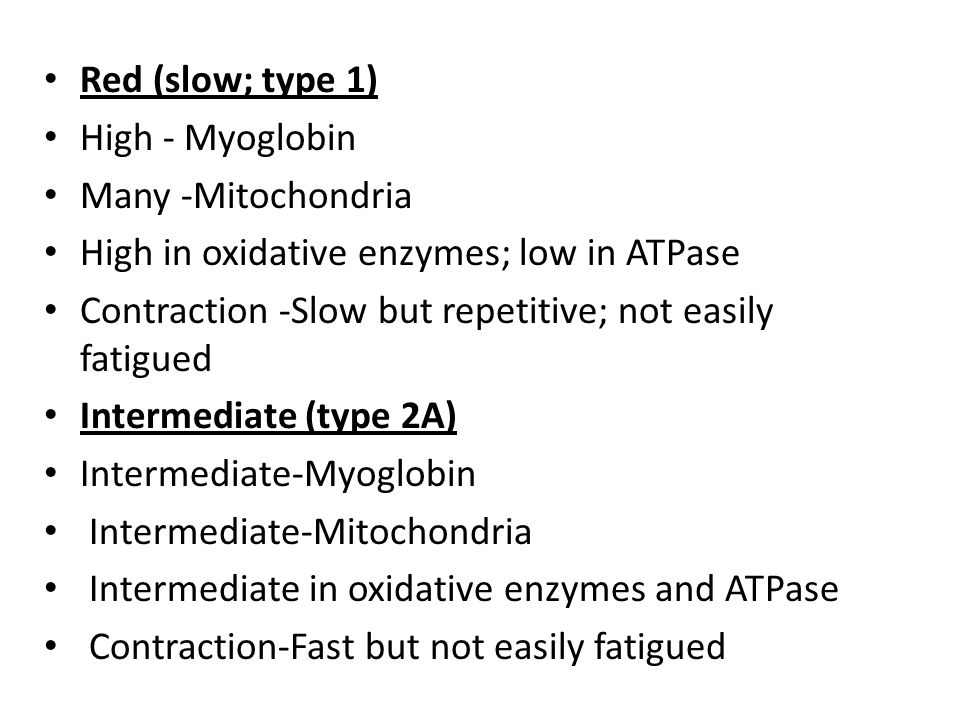 Red (slow; type 1) High - Myoglobin. Many -Mitochondria. High in oxidative enzymes; low in ATPase.