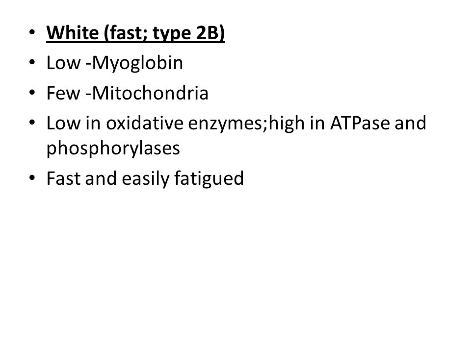 White (fast; type 2B) Low -Myoglobin. Few -Mitochondria. Low in oxidative enzymes;high in ATPase and phosphorylases.
