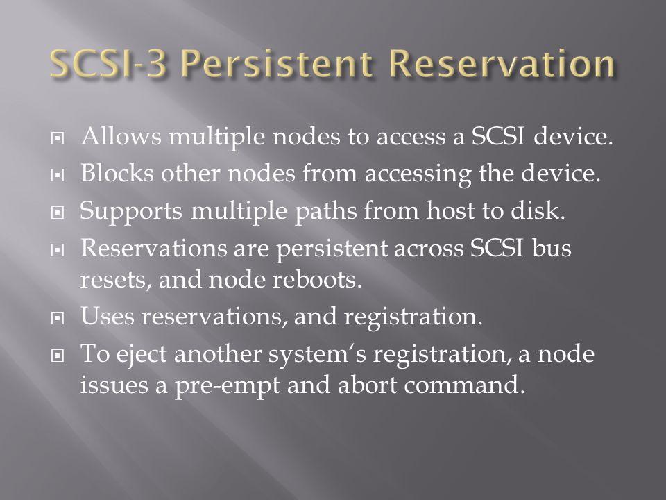 SCSI-3 Persistent Reservation