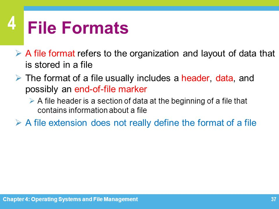 File Formats A file format refers to the organization and layout of data that is stored in a file.
