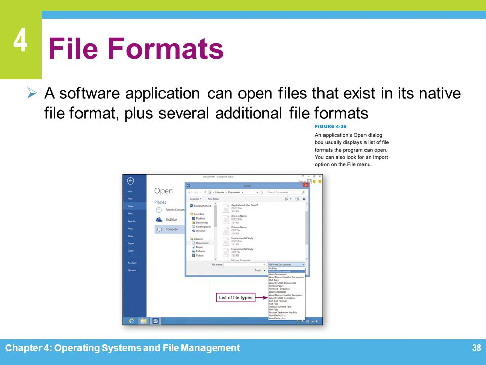 File Formats A software application can open files that exist in its native file format, plus several additional file formats.