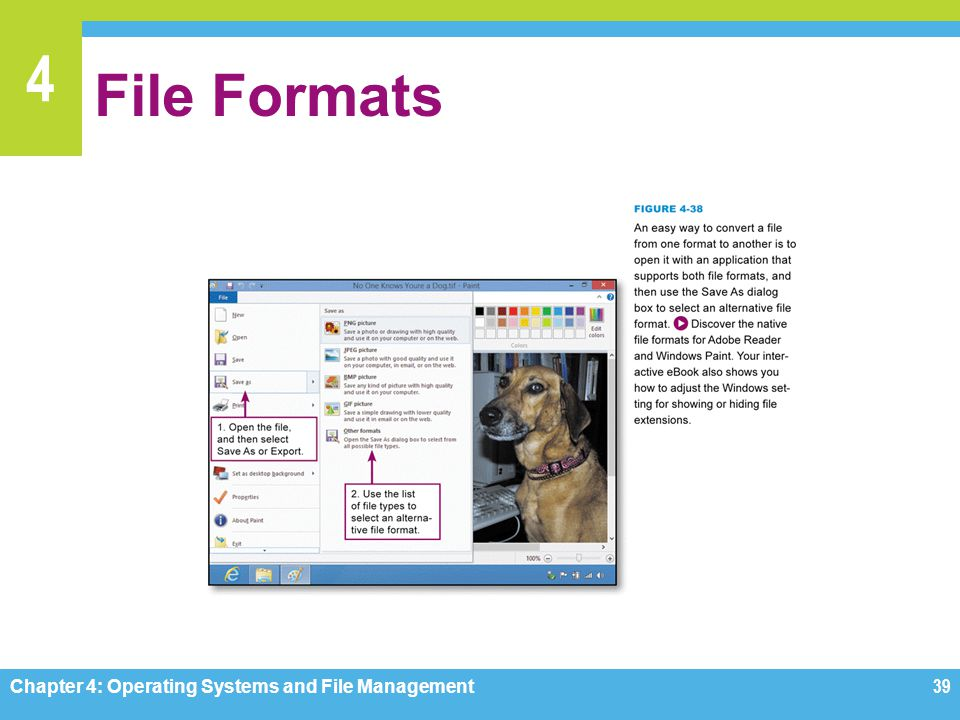 File Formats Chapter 4: Operating Systems and File Management
