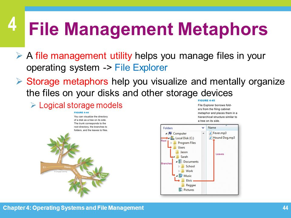 File Management Metaphors