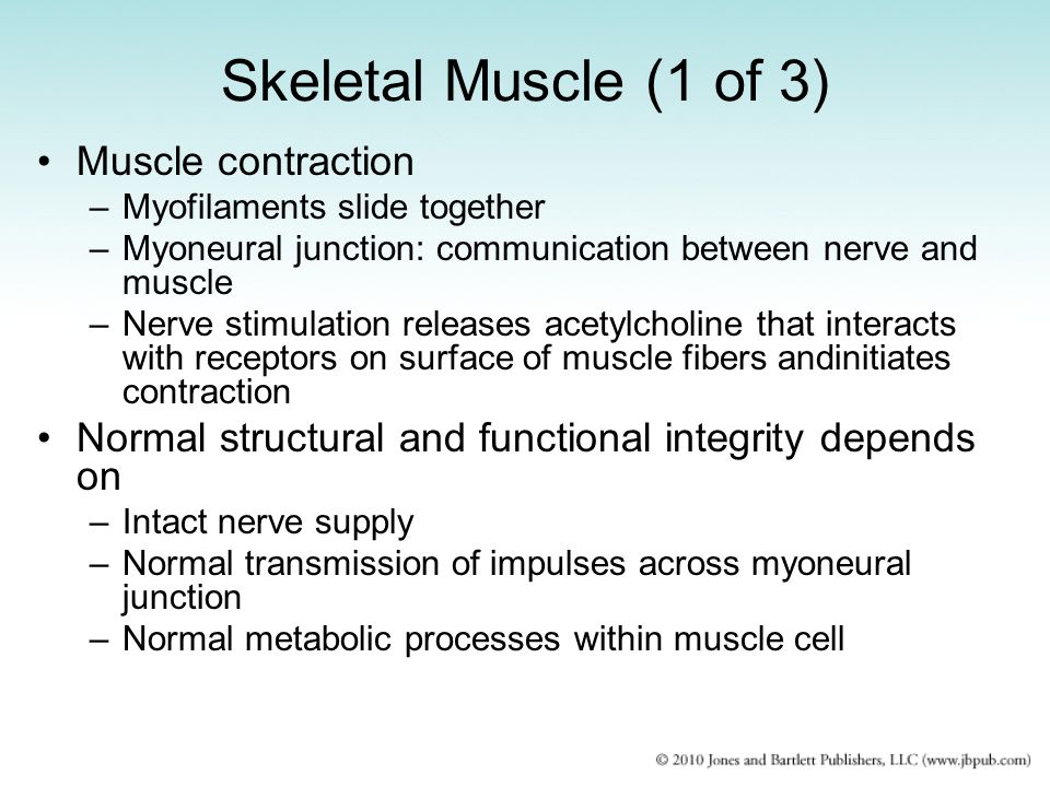 Skeletal Muscle (1 of 3) Muscle contraction
