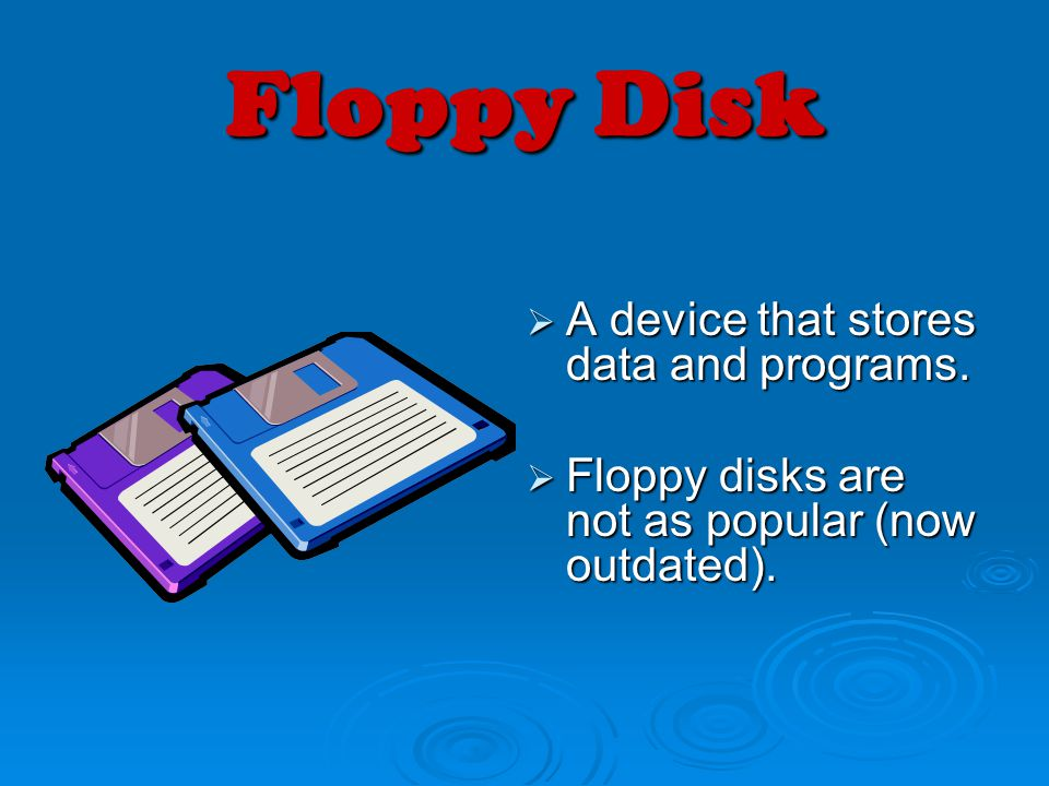 Floppy Disk A device that stores data and programs.