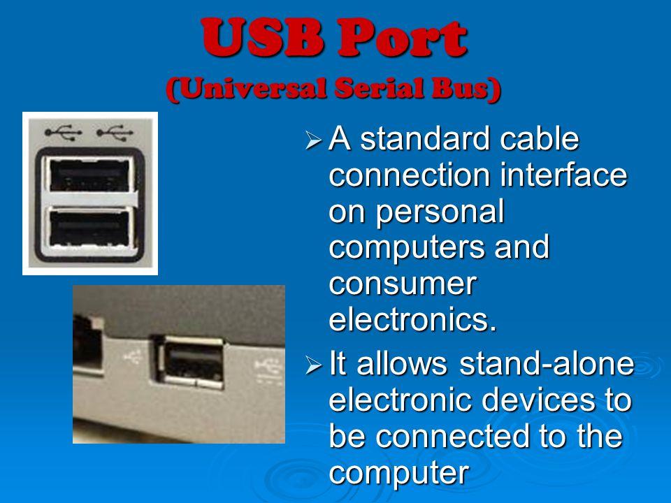 USB Port (Universal Serial Bus)