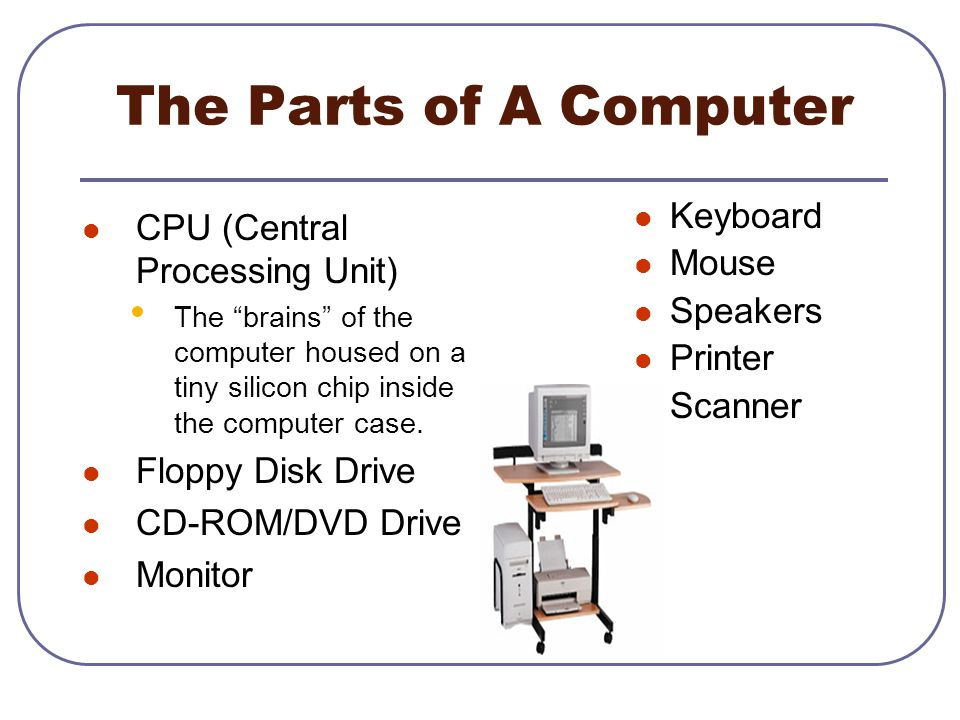 The Parts of A Computer Keyboard CPU (Central Processing Unit) Mouse