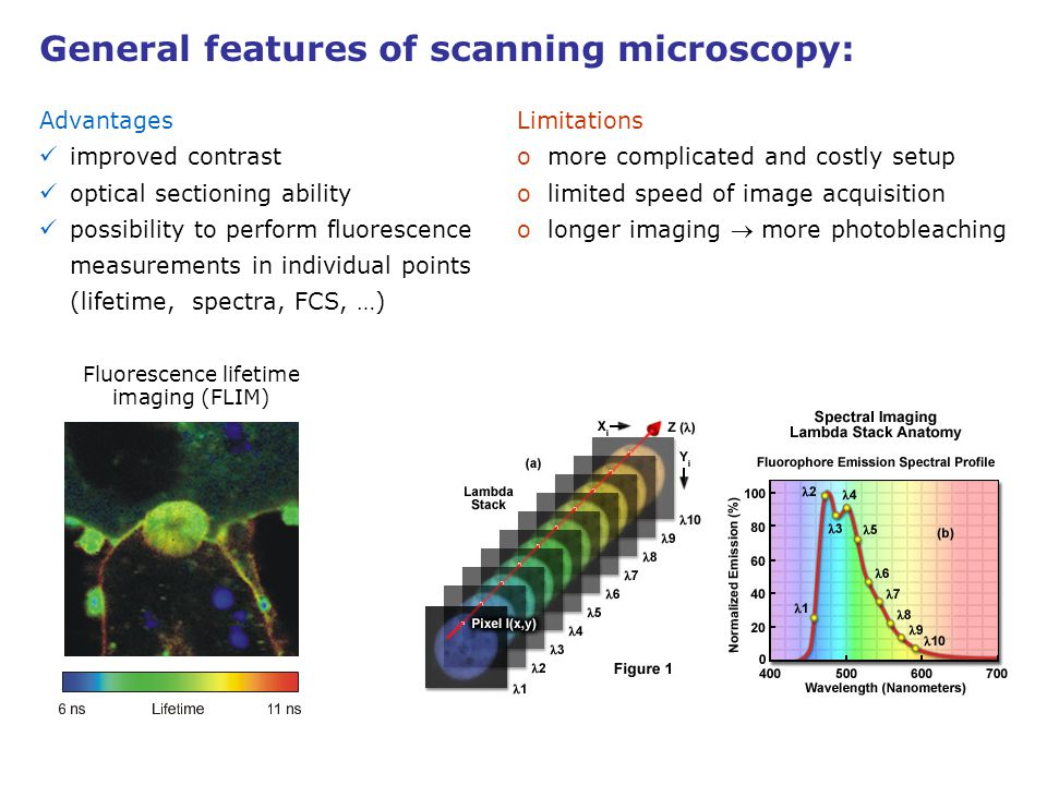 Fluorescence lifetime imaging (FLIM)