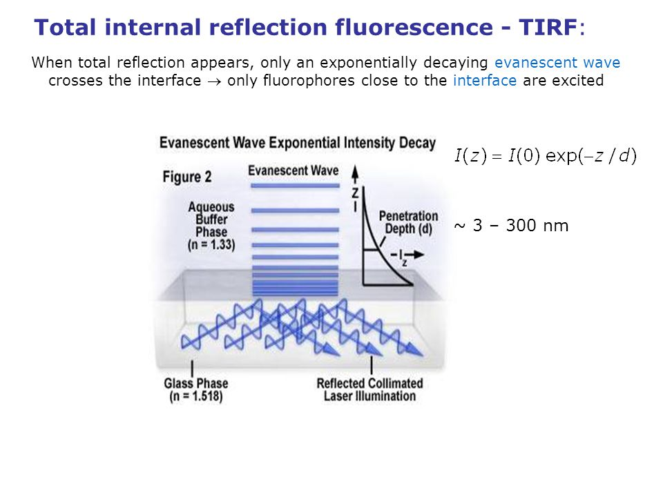 Total internal reflection fluorescence - TIRF: