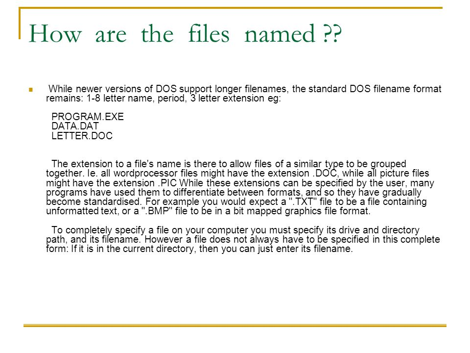 How are the files named